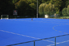 Blue revolution in hockey pitches